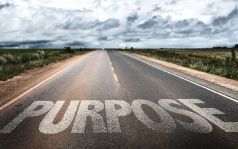 A Sense of Purpose – Know Your 'Why'